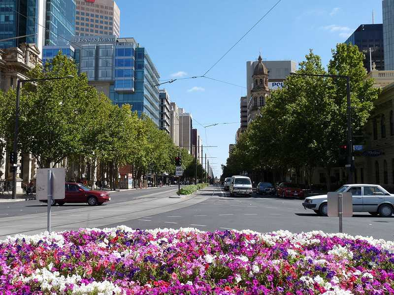 Adelaide-Australie-wikipedia-Halkoutsa_compressed