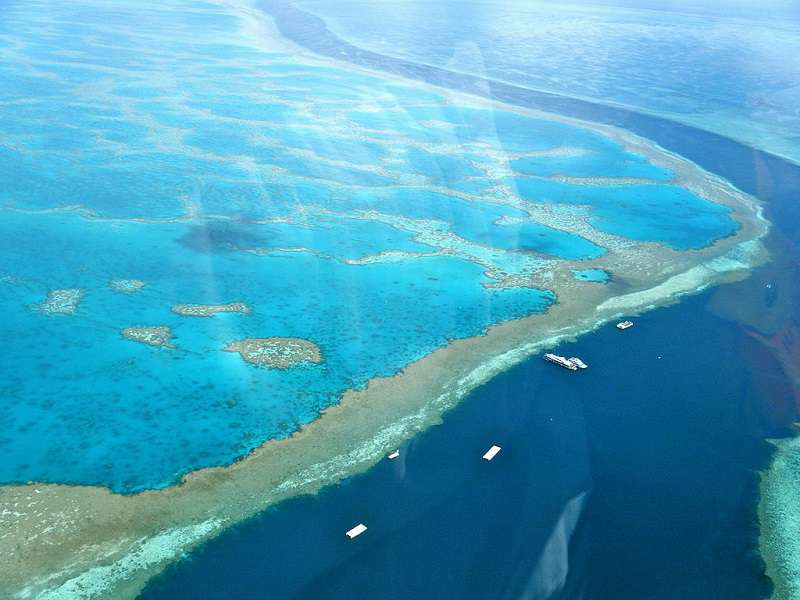 Great_Barrier_Reef_wikipedia_Sarah_Ackerman_compressed