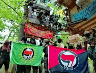 Čeští aktivisté jedou okupovat německý les