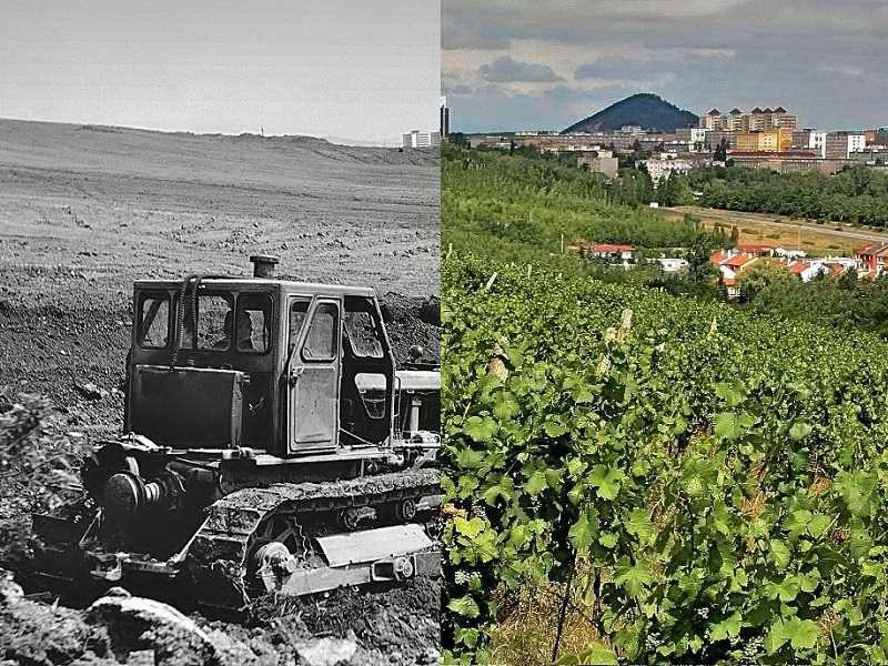 Štýs vinohrady Slatinice