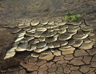 Předpovědi klimatických krizí dlouhodobě nevycházejí